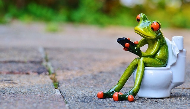 Frog using phone on the toilet
